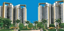 Blossom County for Sale at Gurgaon, Delhi NCR