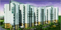 Mansion Park Prime for Sale at Noida, Delhi NCR