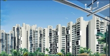 New Rajneegandha Green for Sale at Gurgaon, Delhi NCR